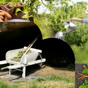 Equipement & Bien-être du Jardinier